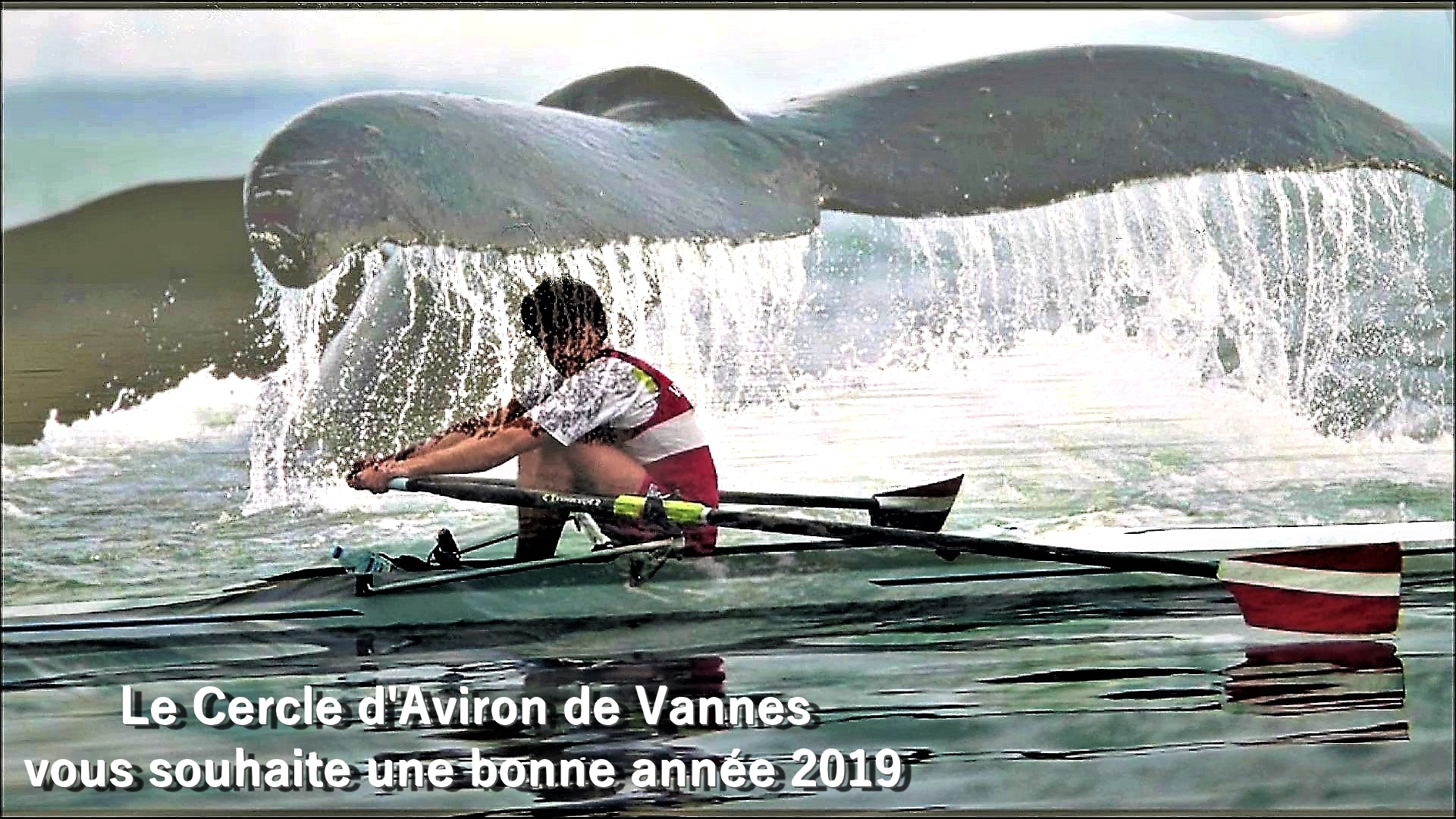 bonne année 2019 skiff